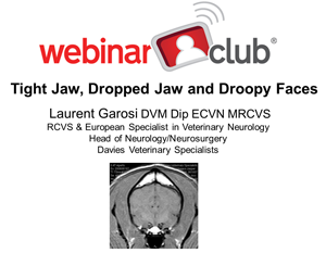 Tight Jaw, Dropped Jaw and Droopy Faces | Veterinary Webinar